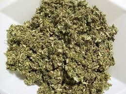 Wholesale Herb Medicine: Moringa Leaf