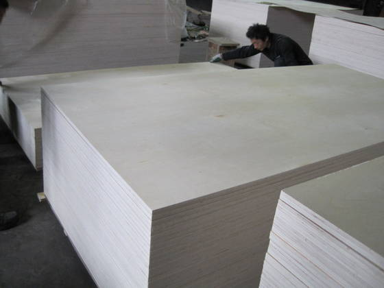 Sell  C-2 white birch plywood