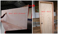 Sell okoume door skin plywood