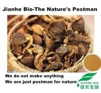 Herbal Extract Organic Shiitake Mushroom Extract