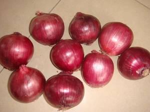Wholesale fresh onion: High Quality Fresh Red Onion