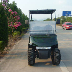 Wholesale Golf Carts: Chinese Cheap Gas Powered Golf Cart with Camo Colar and Off Road
