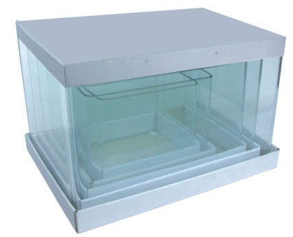 Related keywords suggestions for square aquarium for Square fish tank