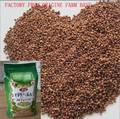 Sell HULLED BUCKWHEAT