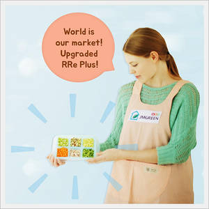 Wholesale lunchbox: Divided Food Storage Container -RRE Plus