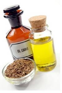 Wholesale sauerkraut: Caraway Oil