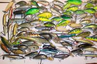 26x Fishing Tackle Box Lure Rapala Cod Bass Trout Bulk