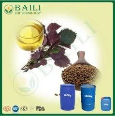 Wholesale omega: Pure Perilla Seed Extract Bulk Oil Rich in OMEGA-3 for Healthcare and Beautifying Skin