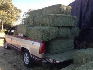 Wholesale art: Rhodes Grass