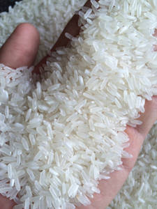 Wholesale white rice: THAI JASMINE RICE Exporters,PARBOILED RICE Suppliers,Cheap Long Grain White Rice ,BASMATI Rice Sale