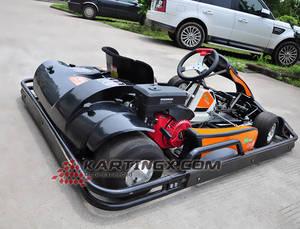 Wholesale Go Karts: Low Price Adult Racing Go Kart for Sale