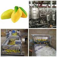 Sell mango, pineapple processing line machine