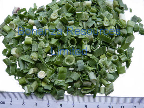 dried onion: Sell Freeze Dried Green Onions Dehydrated Spring Onion