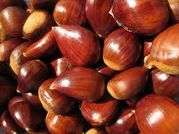 fresh chestnut: Sell Fresh and Roasted Chestnuts--Organic Fresh Chestnut health chestnut