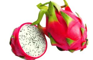 Wholesale sell: Dragon Fruit-Hot Selling Item in Asia
