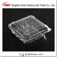 Mamufacturer Plastic Fruit Packing Box Container