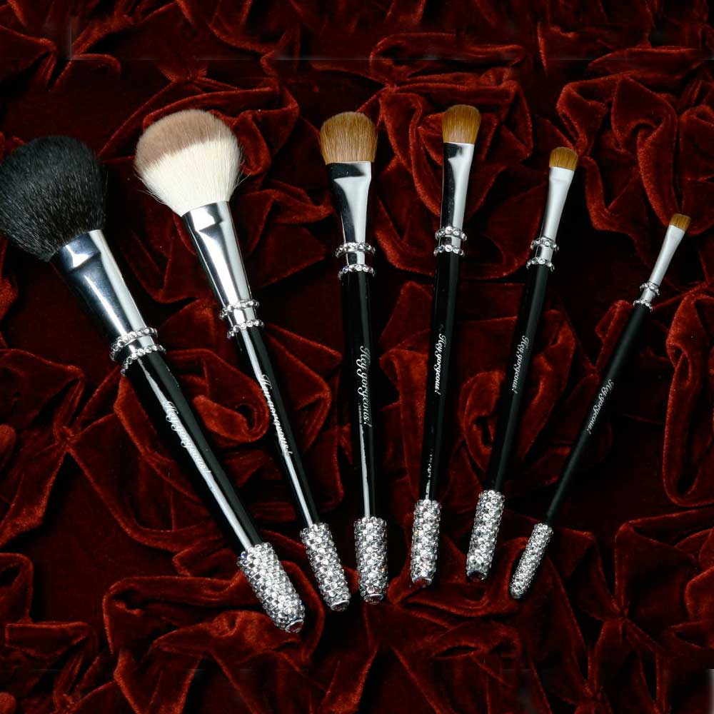 Makeup Brushes for Professionals