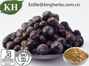Wholesale dried onion: Kingherbs 100% Natural Juniper Berry Extract Ratio Extract 4: 1
