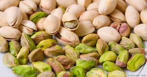 Wholesale Pistachio Nuts: Pistachios