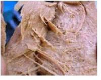 Tissue Soybean Prorein Machinery/Equipment/Line/Plant/Machine
