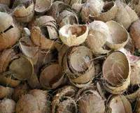 Sell Coconut shell,Palm kernel shell,hardwood charcoal and softwood charcoal