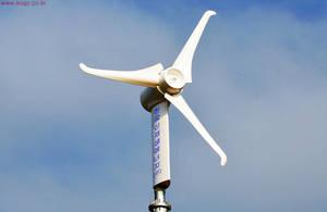 Wholesale Alternative Energy Generators: Wind Power Generator