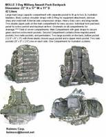 3Day BCL MOLLE Rucksack