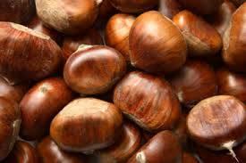 fresh chestnut: Sell good quality chestnuts