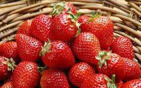 fresh fruit: Sell Fresh Fuji Apple Fruit