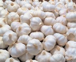 Wholesale fresh white garlic: Fresh Pure White Garlic for Sale