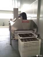 Plate Conveyor IQF Tunnel Freezer