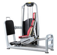 Sell 2012 new design gym equipment, fitness equipment, body building, leg press