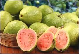 air fresh: Sell Guavas