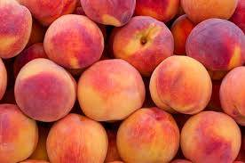 canned yellow peach: Sell Peaches