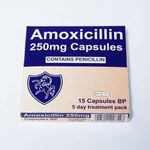 Wholesale earrings: Amoxil 250 Mg Capsules (Generic Equivalent)