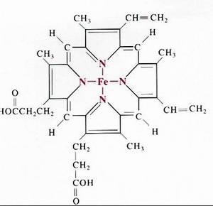 Wholesale hemoglobin: Hemoglobin