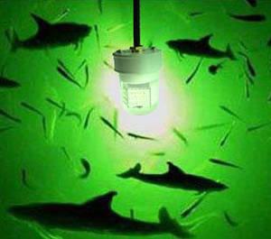 Wholesale led submersible light: 8W - 90W LED Fishing Light Deep Submersible Underwater LED Fishing Lure Light Fish Lure