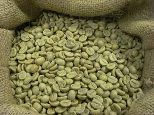 Wholesale document organizer: Green Coffee Beans