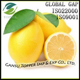 Wholesale fresh lemon: Fresh Lemon