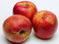 70-80mm Red Yantai Fuji Apple