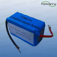 Sell 12V Lithium Ion Batteries 360A Cold Cranking Amp For Motorcycle Starter