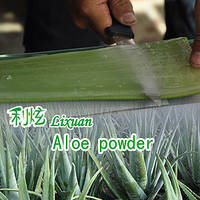 Natural Aloe Powder Barbaloin