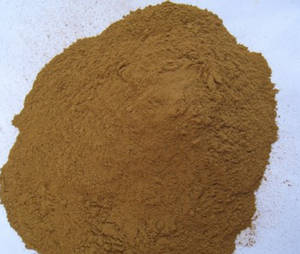 Wholesale spice: Cinnamon Powder