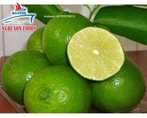 Wholesale spice: Vietnam Fresh Lime