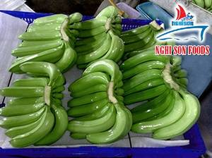 Wholesale korea: Cavendish Bananas