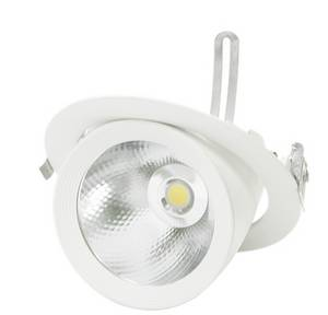 Wholesale led lighting: Gimbal COB LED Down Light (Core Gimbal)