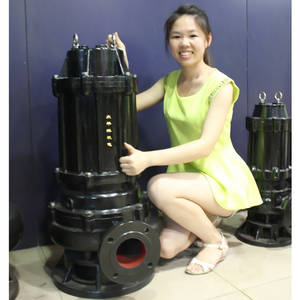 Wholesale philippines distributor: Centrifugal Submersible Pump Stainless Steel Sewage Submersible Pump