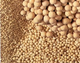 Sell Molecular Sieve  (at competitive price)