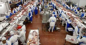 Wholesale mid joint: Whole Fresh or Frozen Chicken