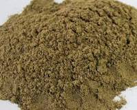 Sell Fish Meal 60% protein